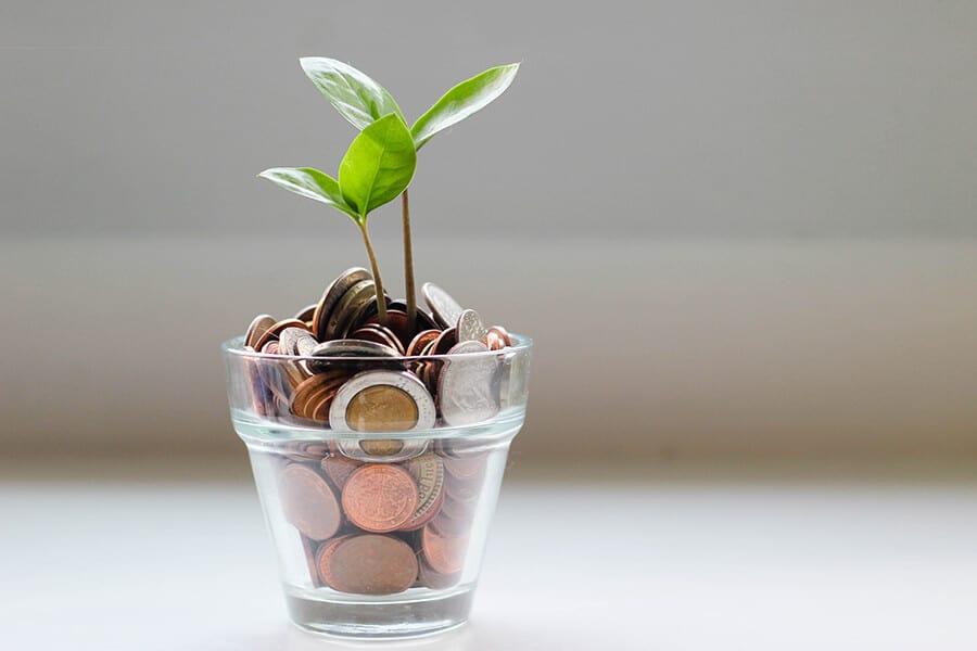קבלת החלטות נכונה בתחום הפיננסי עבור הדיאטנית העצמאית